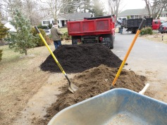 backyard renovation spring 3-14 (44)