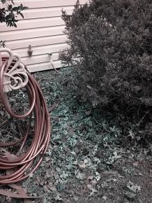 new hose hookup 5-17-1