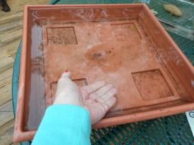 tray full of rain 5-17