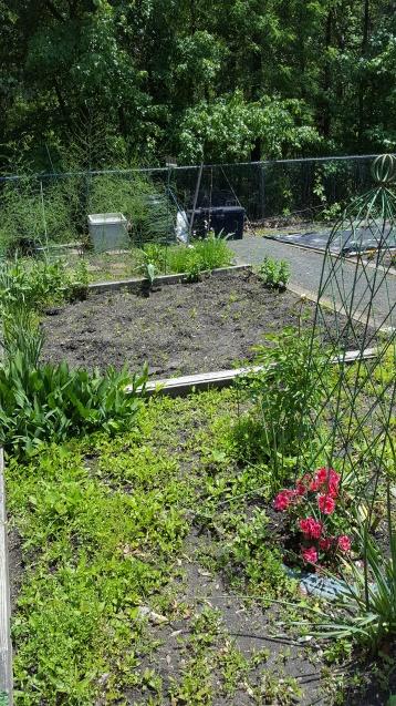 future garden 5-19 (1)